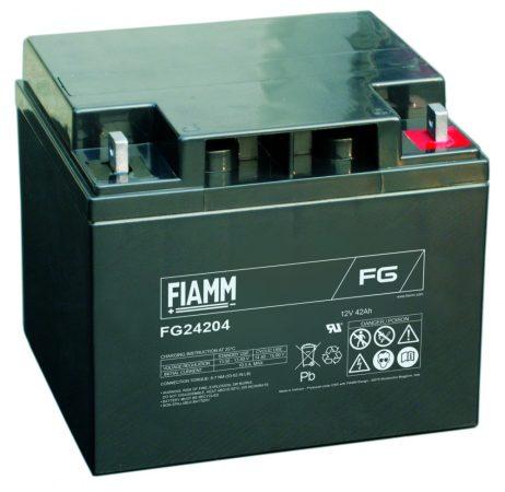 FIAMM FG24204 12V 42Ah Ipari zárt (zselés) ólomakkumulátor
